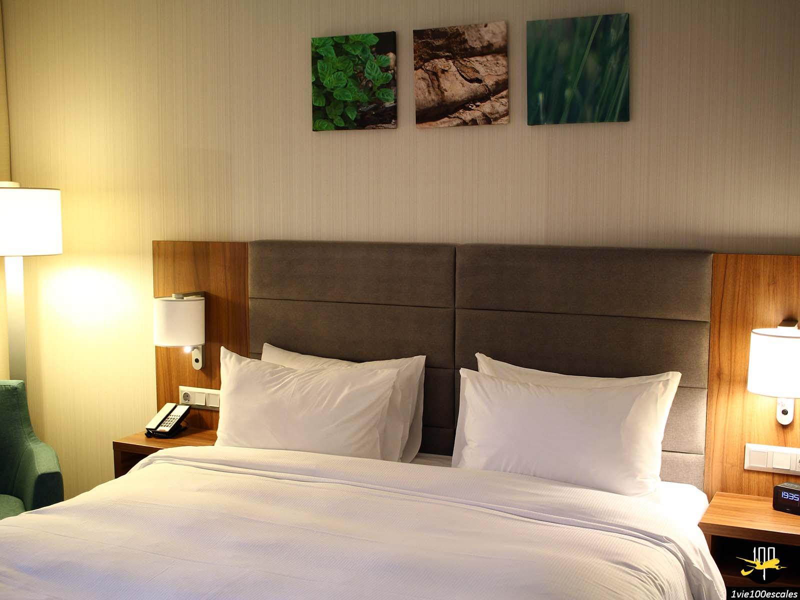 chambre hotel Hilton Garden Inn Bucharest bucarest roumanie