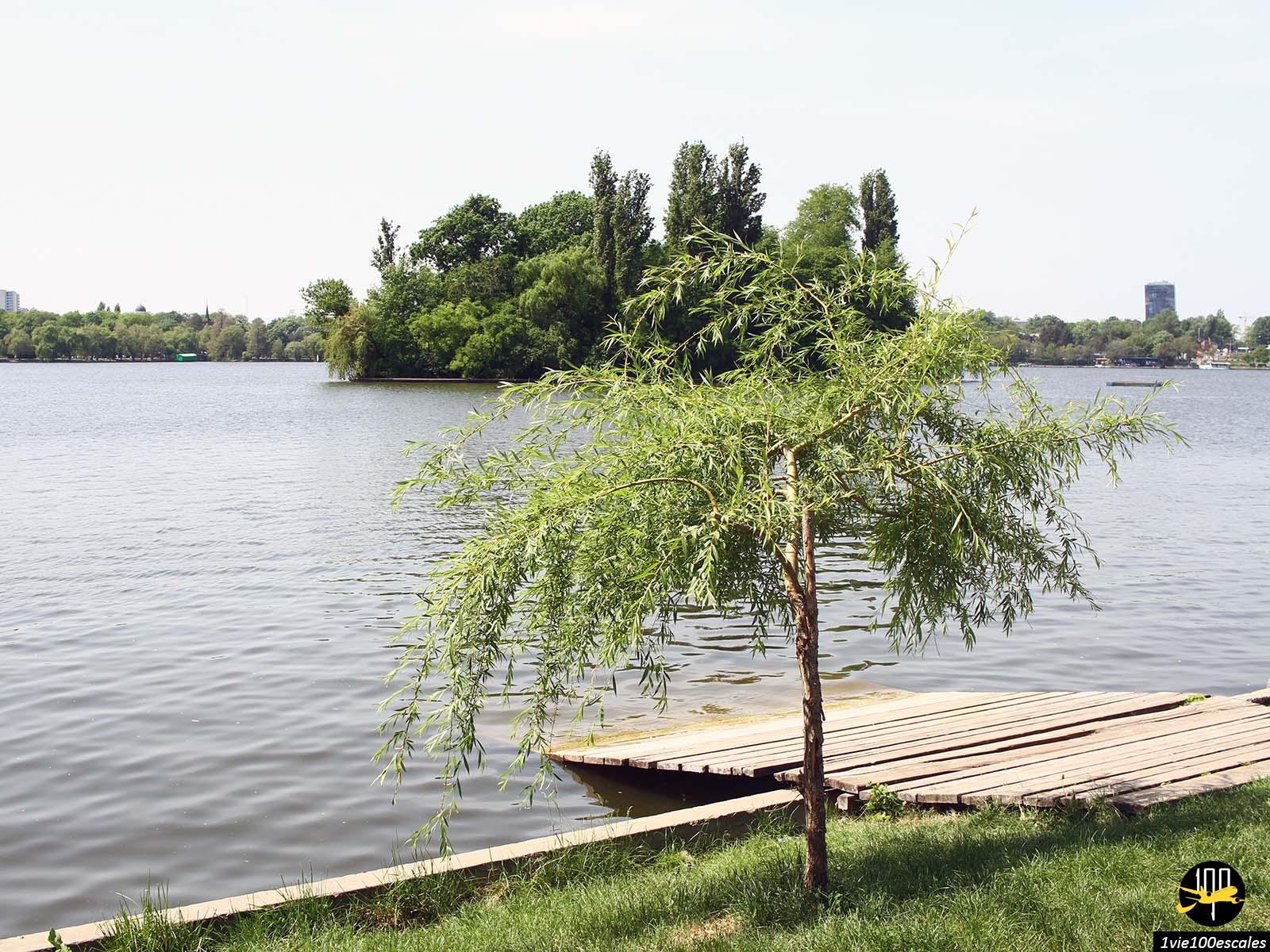 lac Parc Herăstrău bucarest roumanie