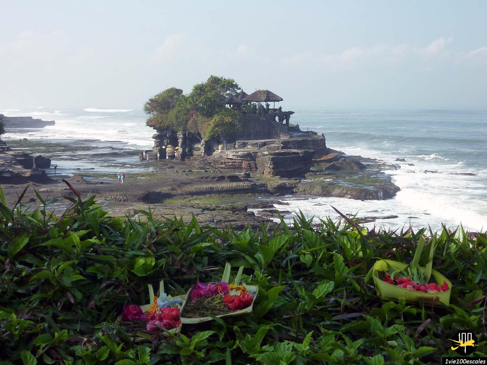 Escale #002 Bali