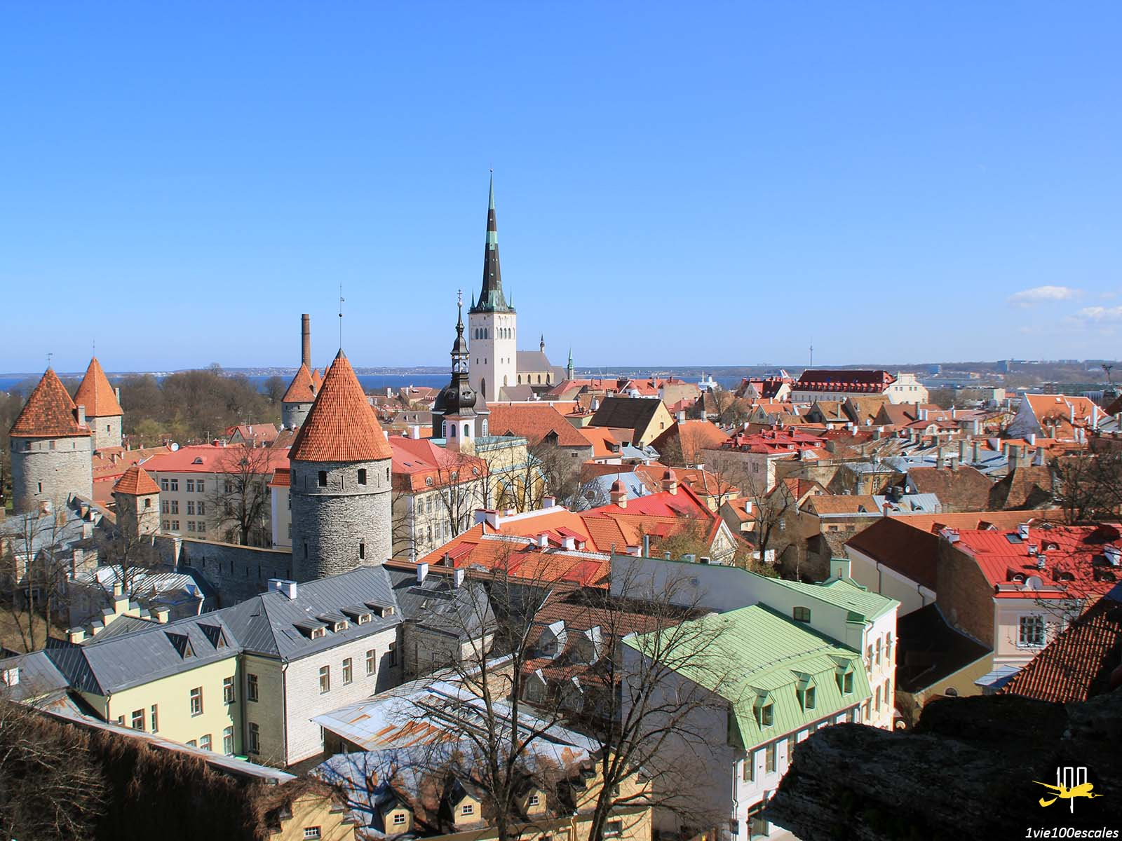 Escale #041 Tallinn