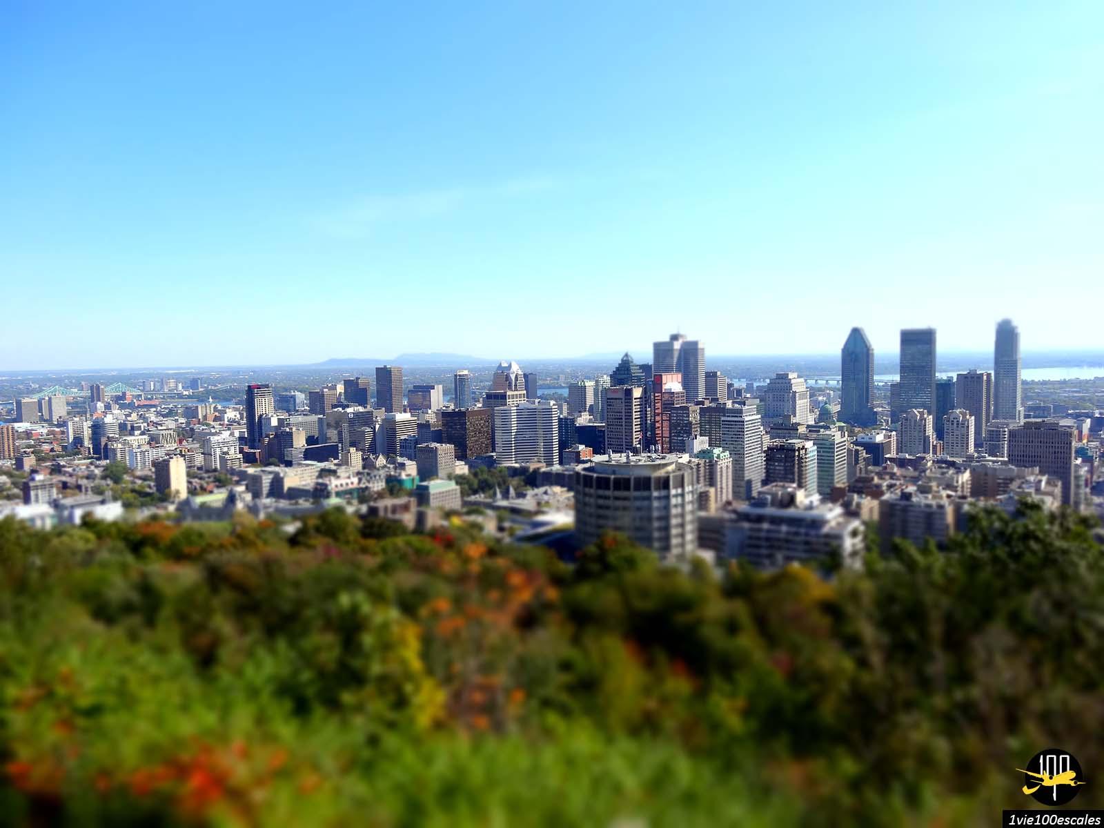Escale #059 Montréal