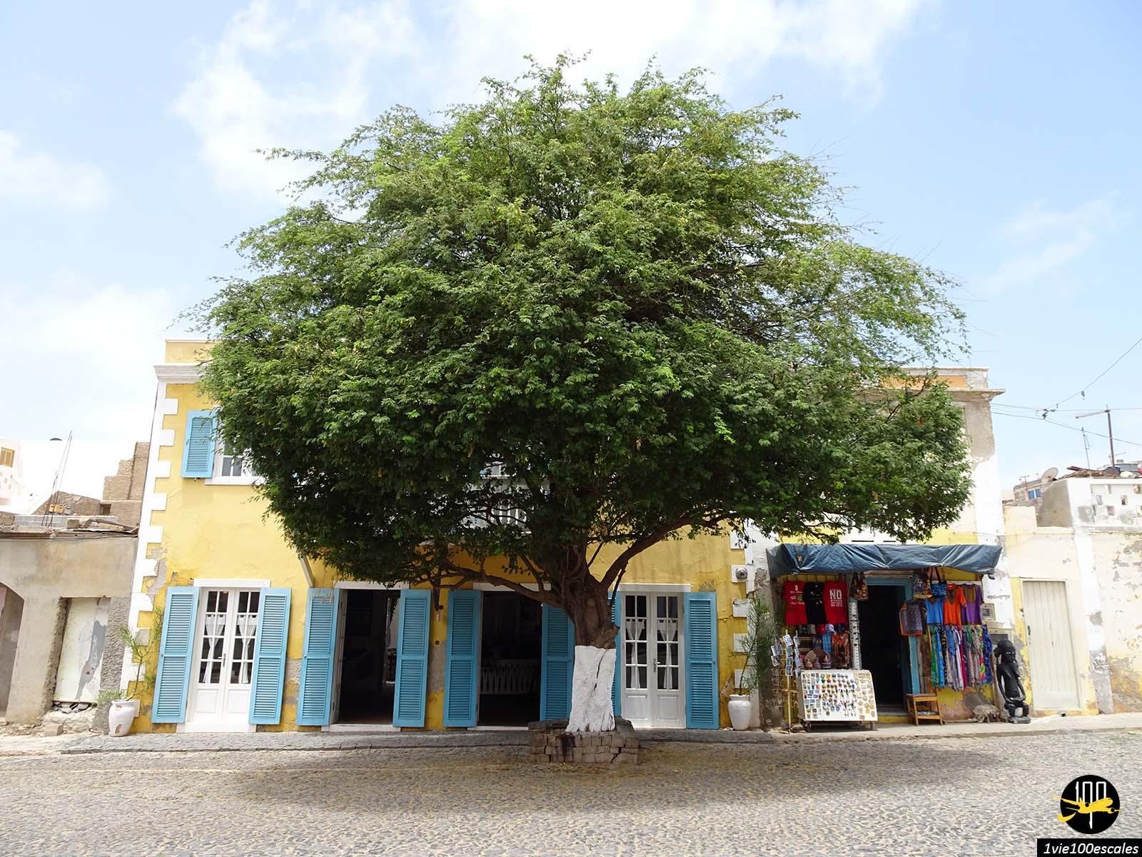 Un magasin et un petit hotel dans le village de Sal Rei sur l'île de Boa Vista