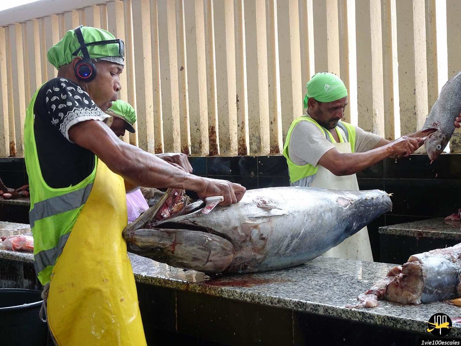 Le marché aux poissons à Mindelo sur l'île de Sao Vicente