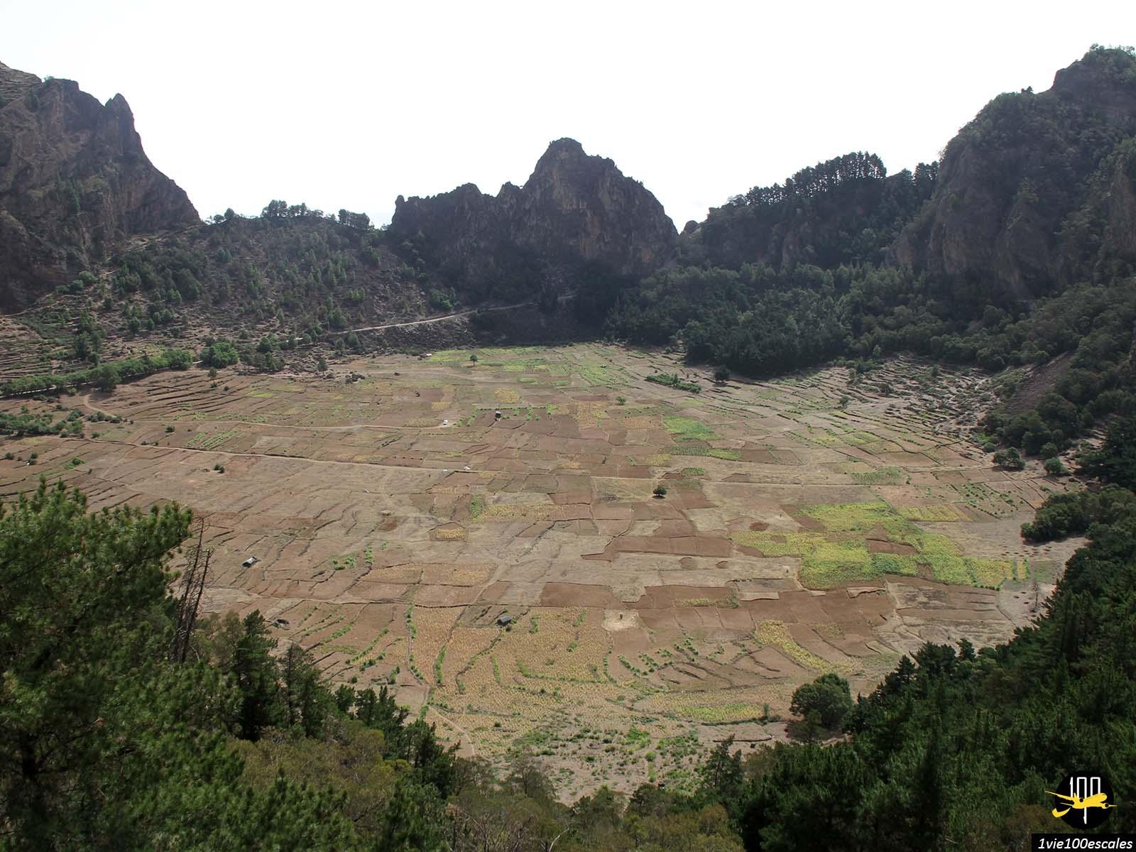 Le cratère Cova de Paúl recouvert par la cultivation à Santo Antao