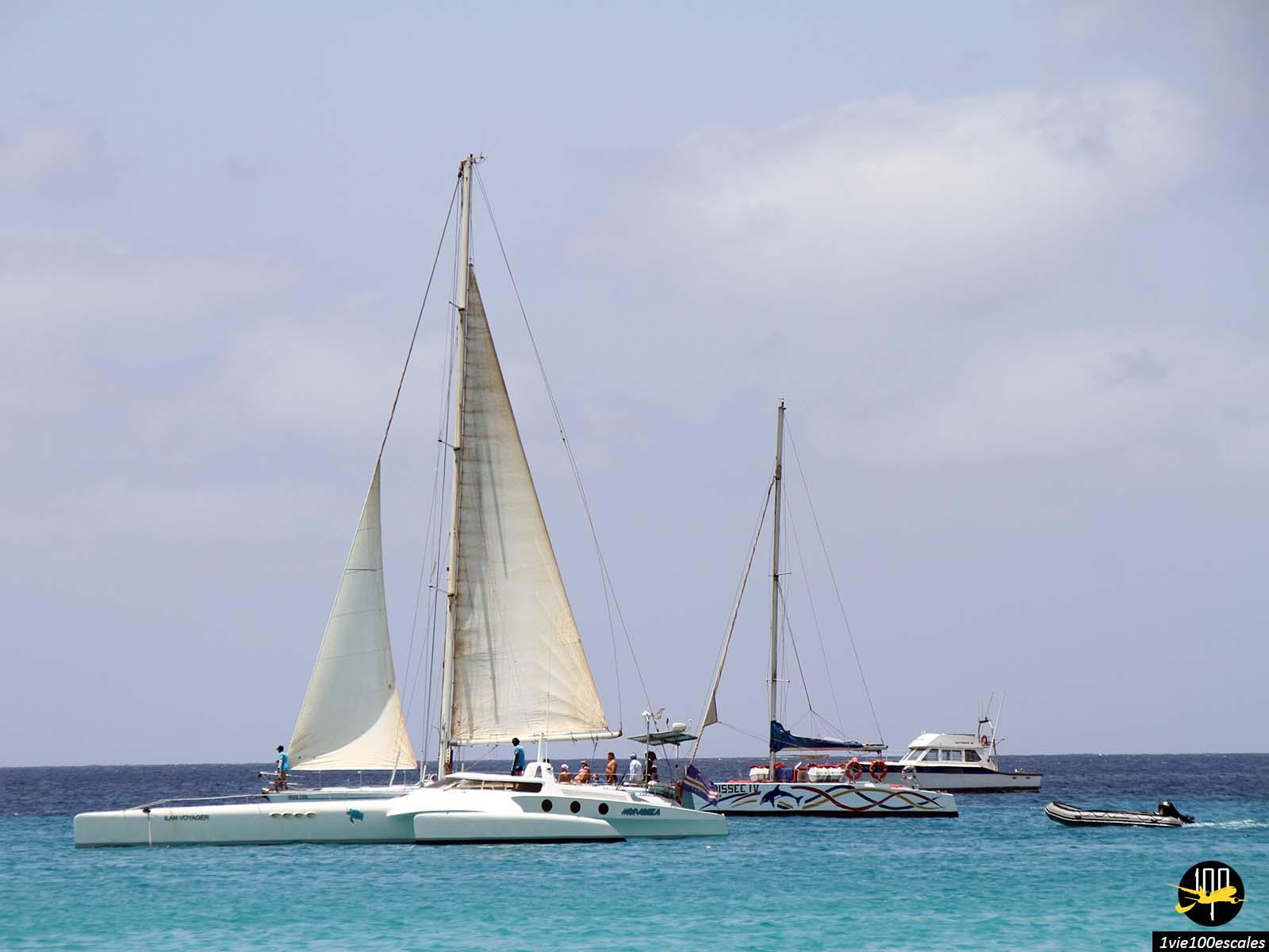 Les bateaux au large de Santa Maria sur l'île de Sal