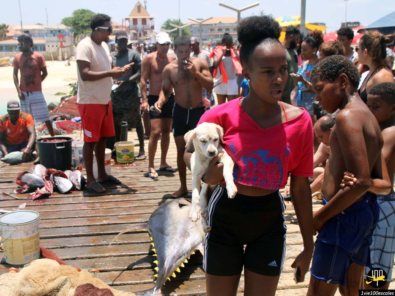 L'ambiance et l'animation sur le poton à l'arrivée des pêcheurs à Santa Maria sur l'île de Sal