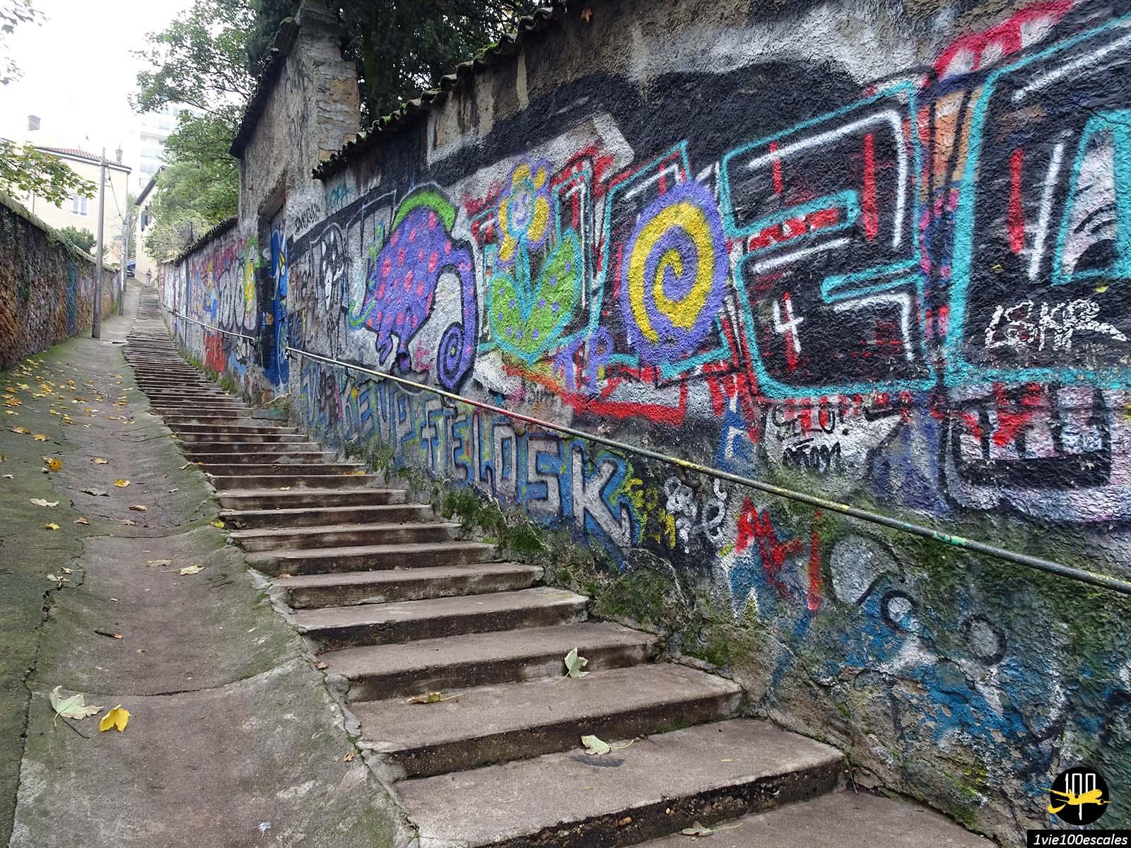 Les escaliers de la croix rousse à Lyon avec son street art