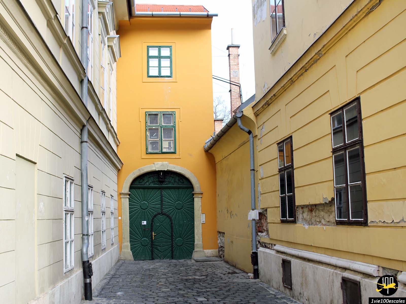 Les vieux immeubles colorés de Buda à Budapest