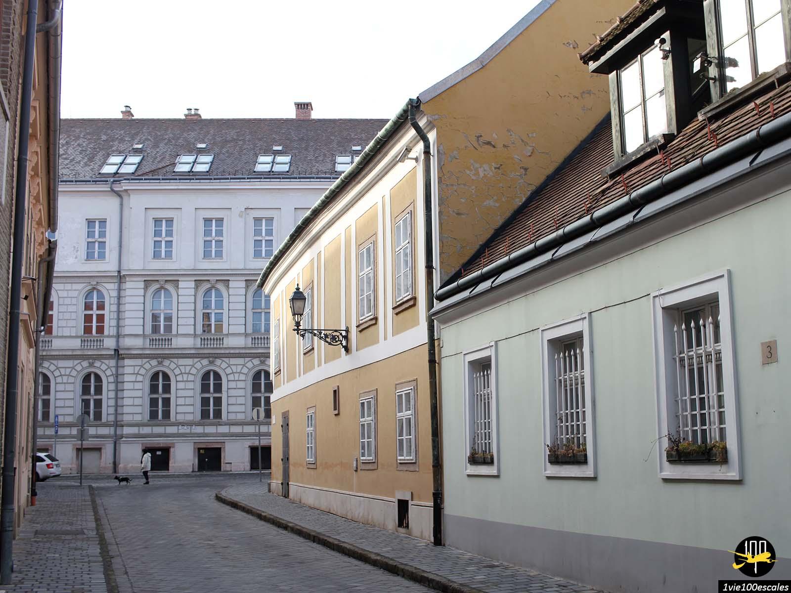Les immeubles colorés du quartier de Buda à Budapest