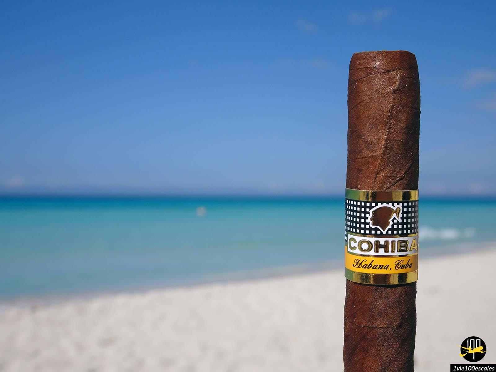 Le fameux cigare cubain le Cohiba Habana Cuba sur la plage de Varadero