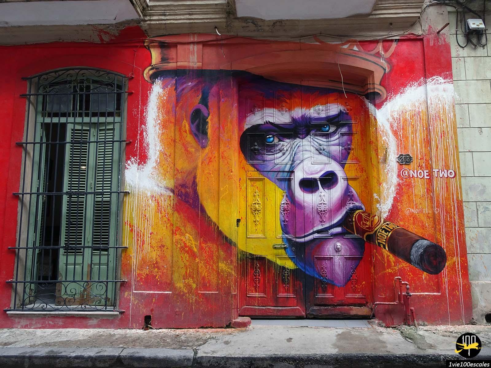 Le street art dans la vieille ville de La Havane à Cuba